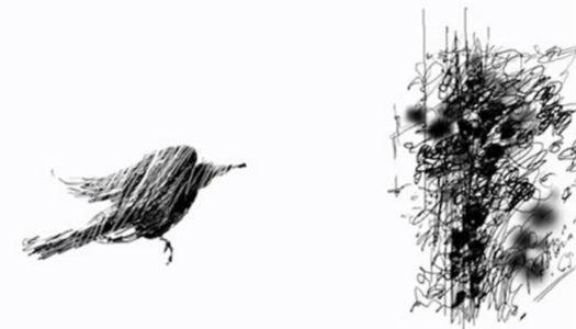 Núcleo de Cinema de Animação lança campanha de financiamento coletivo